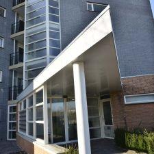 Palissander in Dordrecht