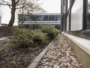 Penta College CSG / Scala Rietvelden - Spijkenisse